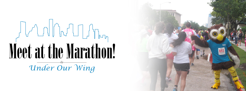 Houston_Marathon-Banner-01