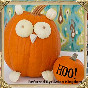 pumpkinowl